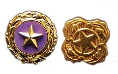 Department of Defense Gold Star Lapel and Next of Kin Pins