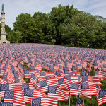 Help us create this beautiful flag garden