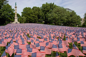 Donate to help us create this beautiful flag garden
